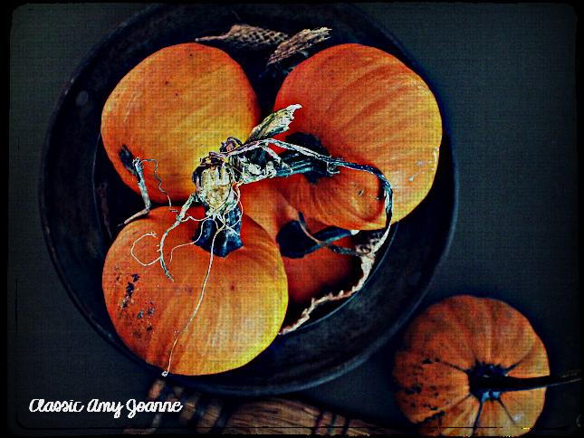 autumn-2016-10