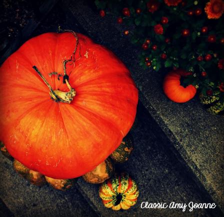 autumn-2016-13